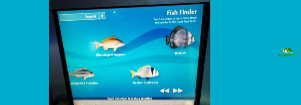 install a fish finder