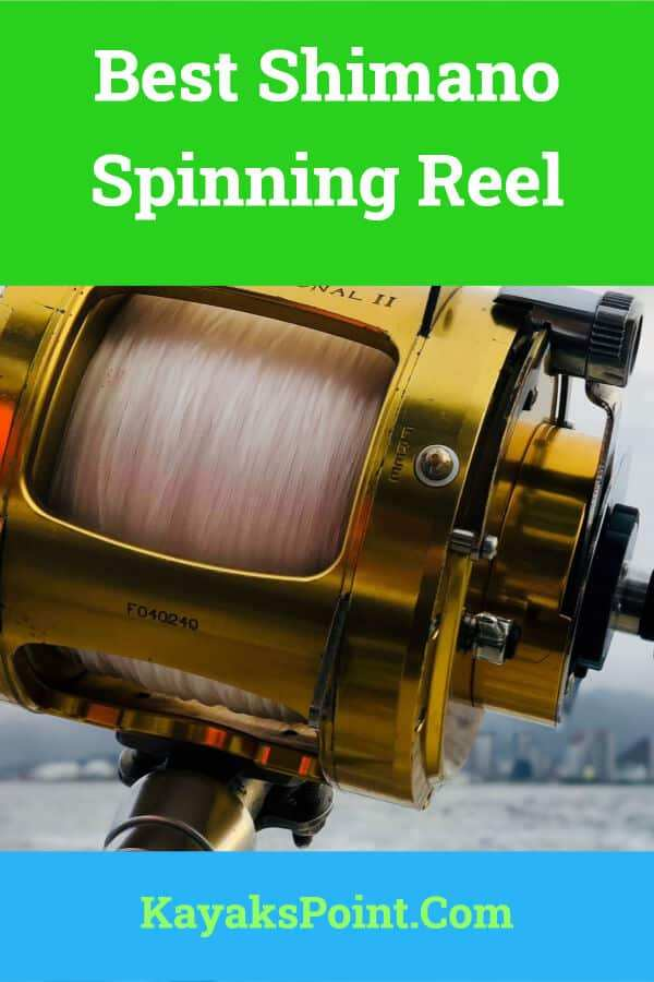 Best Shimano Spinning Reel