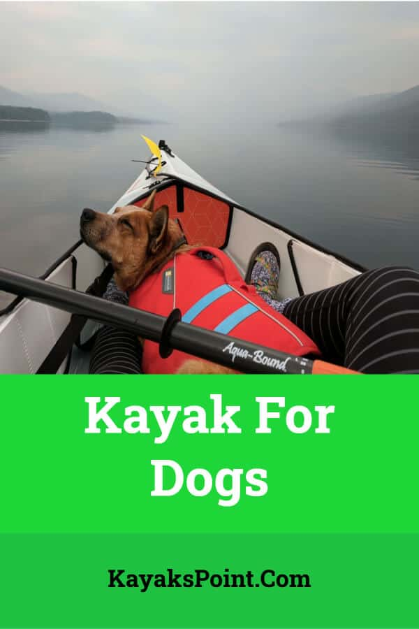 best Kayak For Dogs
