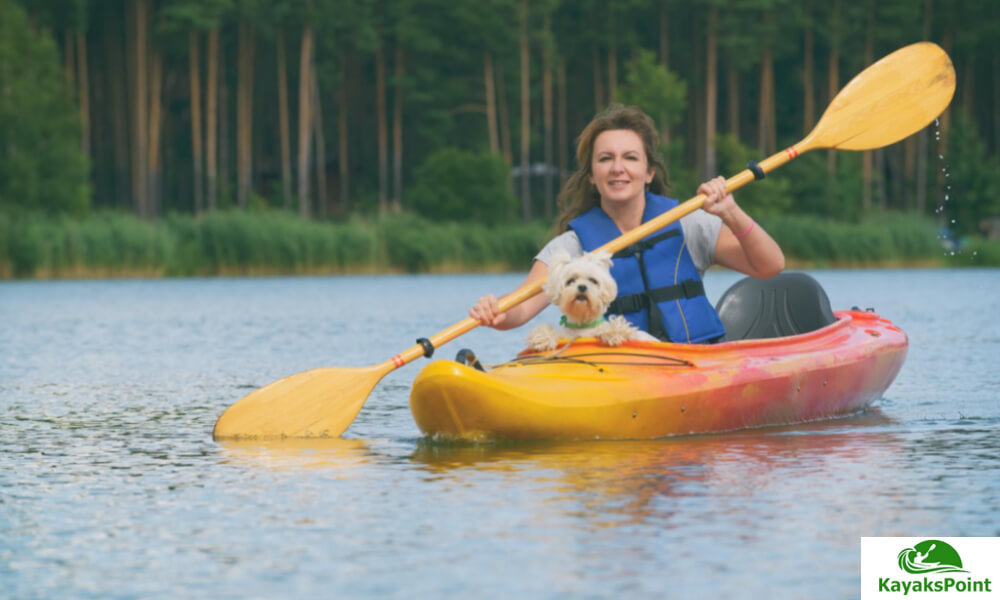 Kayak Platforms Decks And Attachments For Dogs